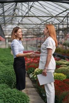 Flüssige Mittel Angebote zum Firmenkauf bedingungen Gesellschaftsgründung GmbH gesellschaft GmbH